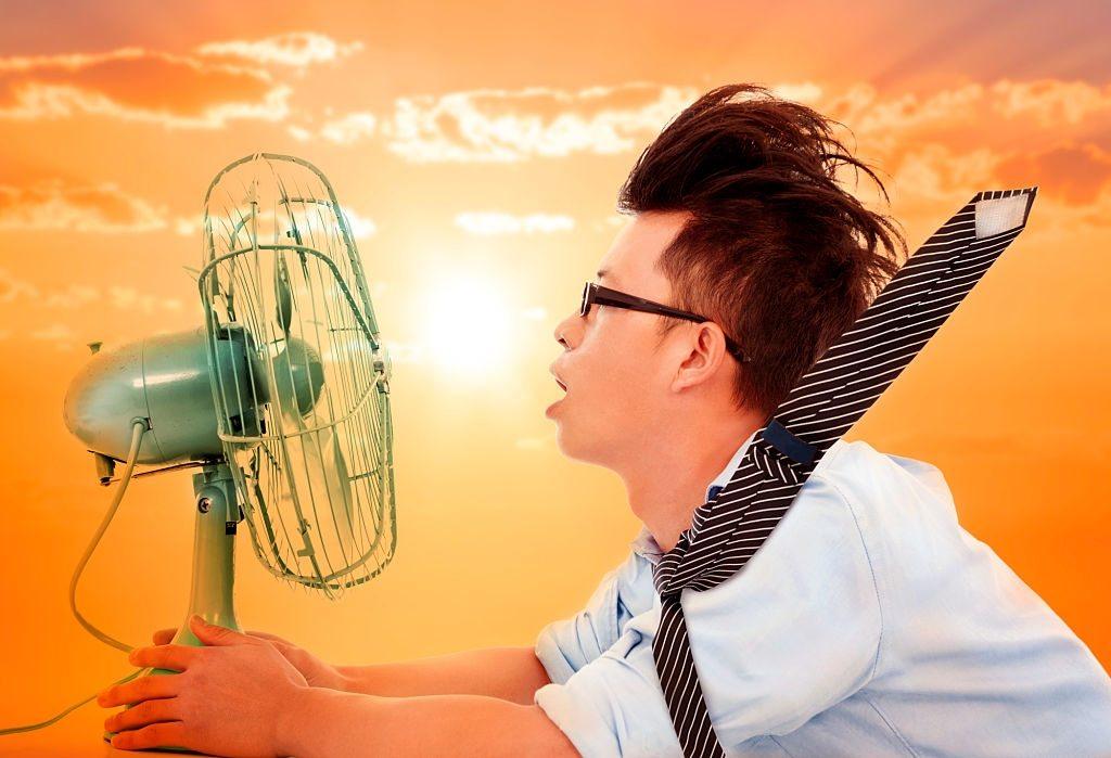 Best Solar Fans